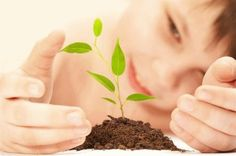 Pensieri & Parole: Riso e gli alimenti biologici