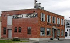 Lasher Hatchery - love this old building