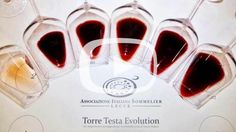 Ais Lecce: Tenute Rubino, Torre Testa Evolution. Guarda il video: http://www.salentoweb.tv/video/9905/ais-lecce-tenute-rubino-torre-testa-evo