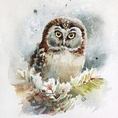 Maria Stezhko Watercolor Owl  Original Bird Painting 7 4/5 x 7 by CMwatercolors