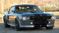 Shelby Gt, Ford Mustang Shelby, Muscle Power, Car Shop, Best Model, American Muscle Cars, Future Car, Ford Models, Automotive Industry