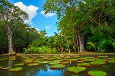 10 most beautiful botanical gardens,