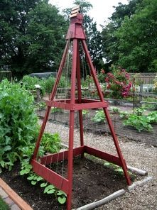 bean trellis with birdhouse. Also use it for a cucumber trellis.