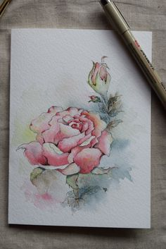 Pink Rose Watercolor Painted Card- Original or Print by SunsetPeonies on Etsy https://www.etsy.com/listing/272050350/pink-rose-watercolor-painted-card