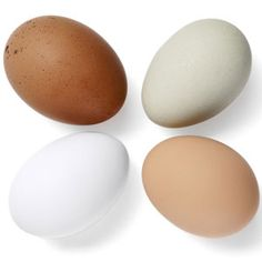 Ways to Cook Eggs