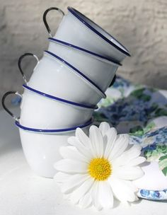 blue rimmed cups