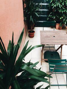 Kleur van de muur (+ contrast met grote, diepgroene planten)