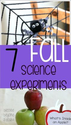 7 Fall Science Experiments that you don't want to miss! - Blessed Beyond A Doubt