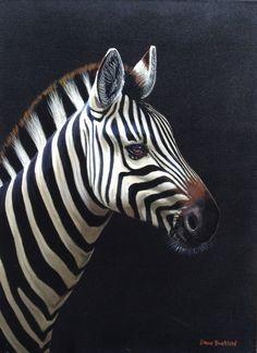 David Bucklow - Moonlight Zebra