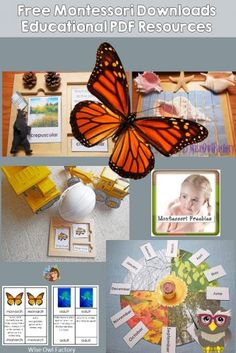 Montessori Instant Resource Downloads -- round up of links to the free Montessori instant resource downloads on this site Montessori Materials, Montessori Activities, Toddler Activities, What Is Montessori, Learning Cards, Early Learning, Pre School, Free Printables, Kindergarten
