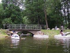 Rzeka Dajna.  www.it.mragowo.pl