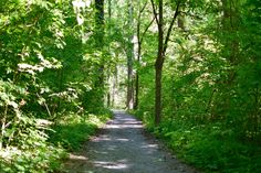 10 Memphis Walking Trails Perfect for Experiencing the Great Outdoors