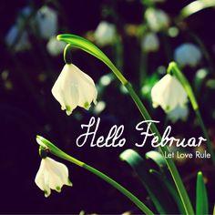 Hello #Februar - Let #Love Rule! #justawaycom