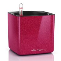 Lechuza | Beliebteste Marken | Amadeo Ambiente Shops, Flask, Barware, All In One, Cube, Glitter, Glamour, Environment, Barn Owls