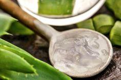 Gesichtsmaske mit Aloe Vera selber machen - Rezept und Anleitung