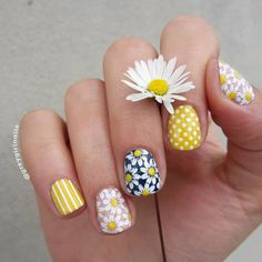 Daisy nails for For these I used a fe. Daisy nails for Sunflower Nail Art, Daisy Nail Art, Daisy Nails, Floral Nail Art, Rose Nails, Pink Nails, Gel Nails, Acrylic Nails, Elegant Nails