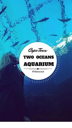 This amazing underwater nature reserve is home to over 3 000 marine creatures. It also offers you the opportunity to dive with sharks and interact with penguins. Nightlife Travel, Travel And Tourism, Ocean Aquarium, V&a Waterfront, Underwater World, Nature Reserve, Africa Travel, Best Cities, Cape Town