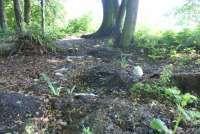 Odnowiony park w Brodach