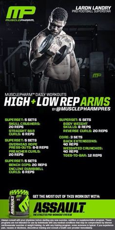 High & Low Rep Arms                                                                                                                                                                                 More