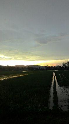#Senja klaten central java indonesia