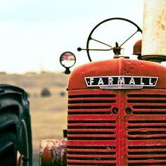 BOGO SALE - Farmall 8x8 - Red Tractor Photo - Farm Photograph - Red Tractor Wall Art  - Tractor Print - Kids Wall Art - Color Photo. $30.00, via Etsy.