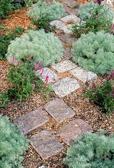 Stone path through herb garden using cut stone as stepping stones. Pretty but not very practical. Who actually walks like this?