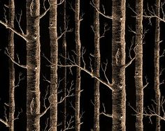 Textures Texture seamless | Trees background wallpaper texture seamless 12245 | Textures - MATERIALS - WALLPAPER - various patterns | Sketchuptexture