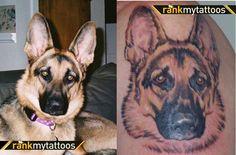 My German Shepherd Dog Dog Tattoo German Shepherd Tattoo, German Tattoo, German Shepherd Dogs, Black Sleeve Tattoo, Sleeve Tattoos, Lion Tattoo Design, Tattoo Designs, Paw Tattoos, Rock Tattoo