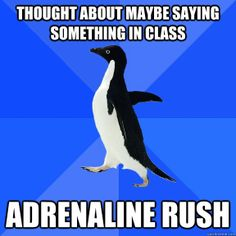 Socially Awkward Penguin...is it sad that this describes me at times? lol