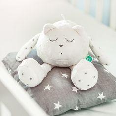 Mon Doudou a Comptines Version Anglaise Vtech Baby Bedtime Bunny Comforter