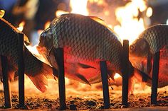 Fish called almasgoff.. A famous at Baghdad - Iraq