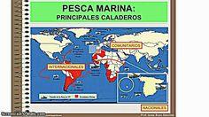 Tutorial de la pesca en España.