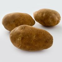 Blazer Russet: Similar to Russet Burbank; yields dry and fluffy baked potatoes and golden fries with crisp outer flesh and dry mashed flavor center.