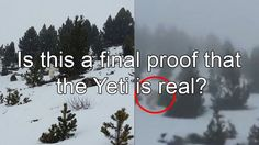 You don't believe what this footage was captured, Is this a final proof that the Yeti is real?