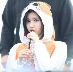 161204 Sana - Yeouido fansign ©Owner #TWICE#SANA#트와이스#사나