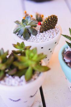 DIY: vasos de barro para suculentas   O Mundo de Jess Craft Ideas To Sell Handmade, Easy Crafts To Sell, Fun Diy Crafts, Planting Succulents, Planting Flowers, Plantas Indoor, Crafty Kids, Cactus Plants, Cacti