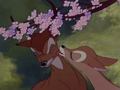 Screencap Gallery for Bambi Bluray, Disney Classics). The animated story of Bambi, a young deer hailed as the 'Prince of the Forest' at his birth. As Bambi grows, he makes friends with the other animals of Walt Disney, Disney Pixar, Disney Amor, Disney Films, Cute Disney, Disney And Dreamworks, Disney Cartoons, Disney Magic, Disney Viejo
