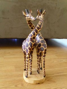 Giraffes are my favorite.
