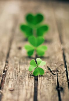 shipwreckedinsc:[_]3 … Happy St. Patrick Day!May the luck of the Irish be with your throughout the day.