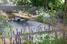 Harpur Garden Images Ltd :: July Marcus Harpur Vestra Wealth's Vista Garden. View through border with Agastache towards laid dining table for outdoor entertaining set on a grey-painted decking surrounded by blue palette planting with Agapanthus Back Gardens, Small Gardens, City Gardens, Vista Garden, African Lily, Farming, Garden Images, Small Space Gardening, Garden Borders