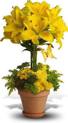 Yellow Fellow Flowers, Yellow Fellow Flower Bouquet - Teleflora.com