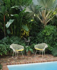 Bertoia Diamond Chair The Bertoia Diamond Chair in white frame is suitable for outdoor applications. Tags / Keywords: Diamond chair Outdoor Seating KnollStudio Knoll Space Media ID: 6499 Credits: Joshua McHugh Tropical Garden Design, Tropical Landscaping, Tropical Plants, Exotic Plants, Garden Landscaping, Modern Outdoor Furniture, Garden Furniture, Modern Patio, Furniture Stores