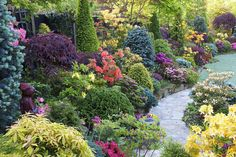 Side border in late spring (May 4th) by Four Seasons Garden, via Flickr
