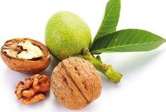 Jak a kdy udělat rozmnožovací řez ořechu