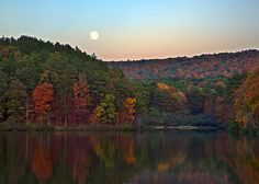 Fall Leaves at Oak Mountain State Park
