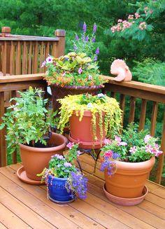 My deck garden.