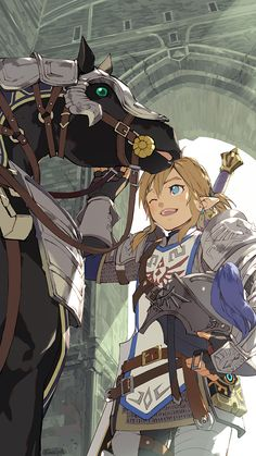 Legend Of Zelda Memes, Legend Of Zelda Breath, Zelda Video Games, Botw Zelda, Link Art, Hyrule Warriors, Reverse Image Search, Breath Of The Wild, Art Pages