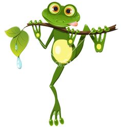 Frog on a branch vector 1358826 - by bruhov on VectorStock�