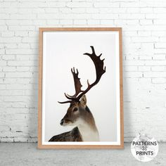 Christmas stag - Animal print- Printable Wall art - Digital print - Modern Scandinavian design – Photography