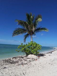 Florida Keys near Marathon